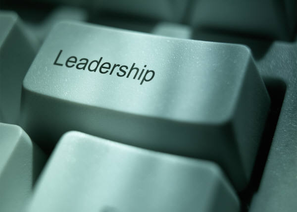 To Become A Fearless Leader